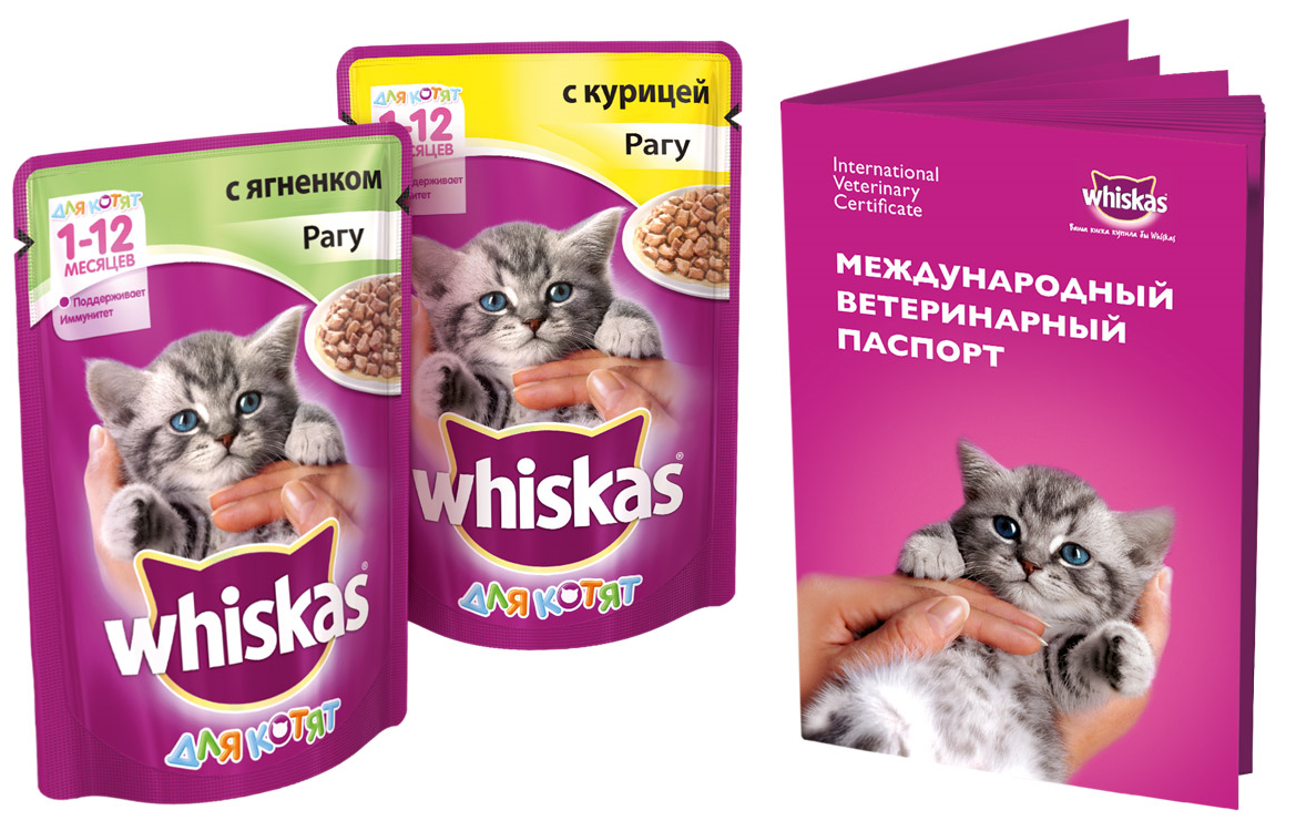 podarok-Viskas-2-paucha1